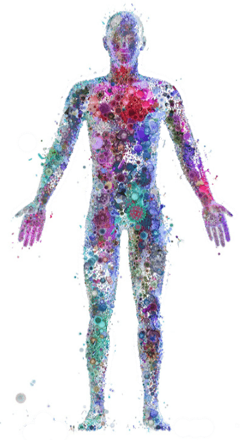 Probiotic Healthy Body
