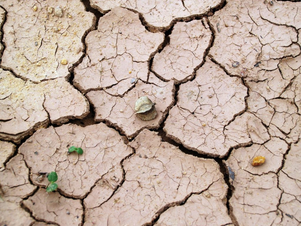cracks-in-the-dry-earth-with-loose-leaves