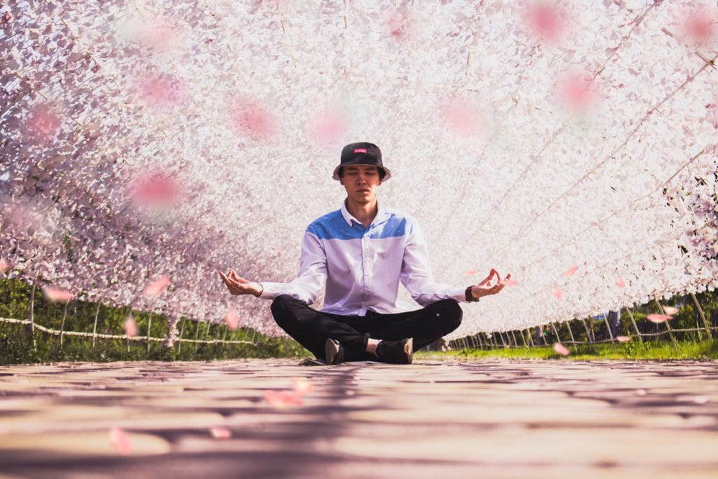 man-meditating-in-the-middle-of-pathway-under-canopy-of-cherry-blossoms