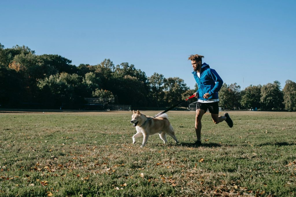 A healthy young man and dog running in a park. Exercise and a healthy diet as well as supplementation with prebiotics and probiotics can help keep the weight off.