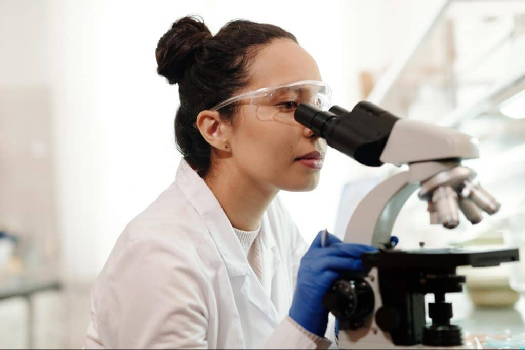 Scientist uses microscope to view probiotic bacteria.